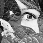 peeking through leaves