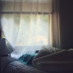 veiled window