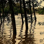 flood - standing water